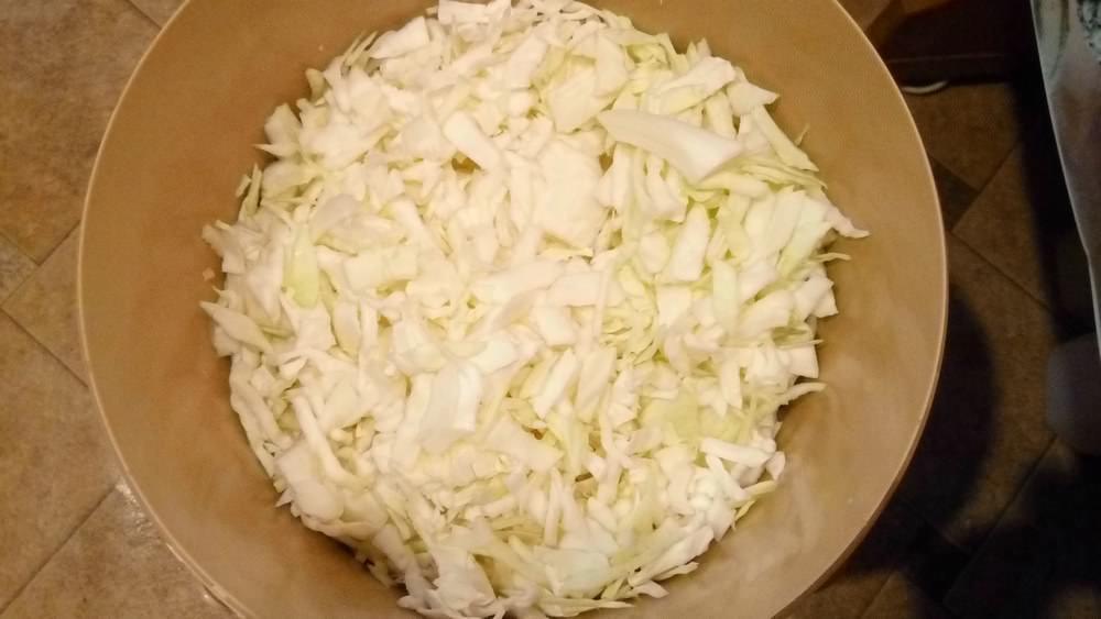 Натираем свежую капусту на среднюю терку и отправляем ее на сковородку для обжарки
