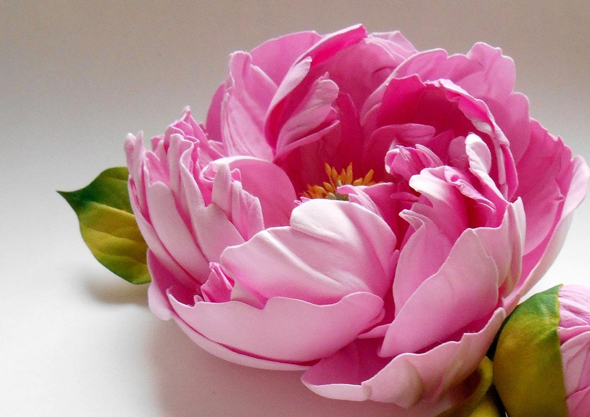Для изготовления пиона можно использовать фоамиран различных цветов: розового, белого, красного