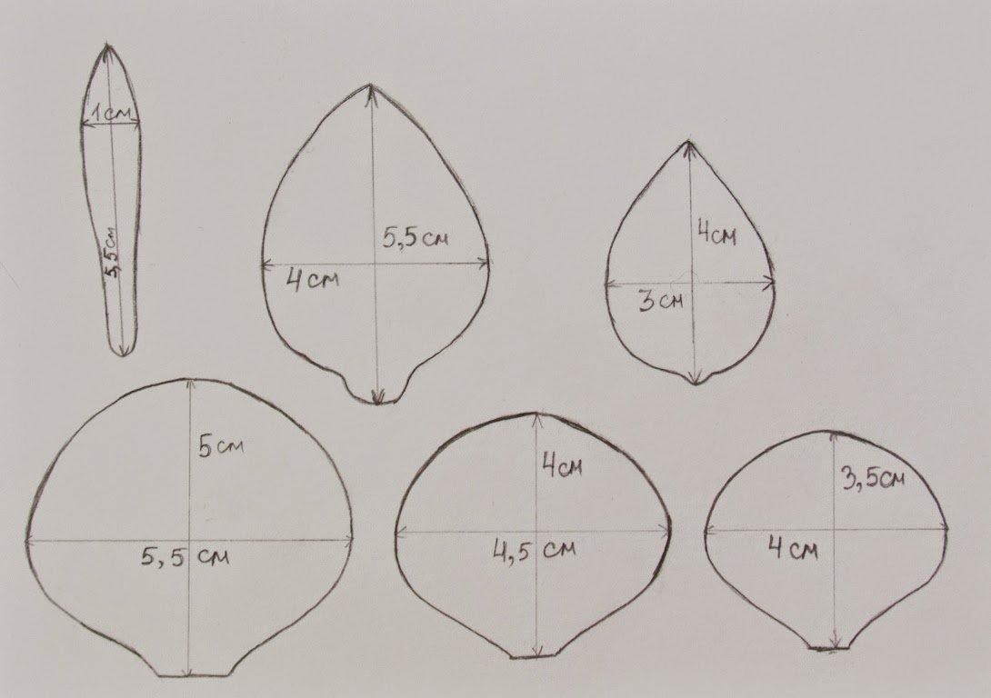 Чтобы изготавливать розы из фоамирана разных размеров, рекомендуется заранее сделать несколько шаблонов лепестков