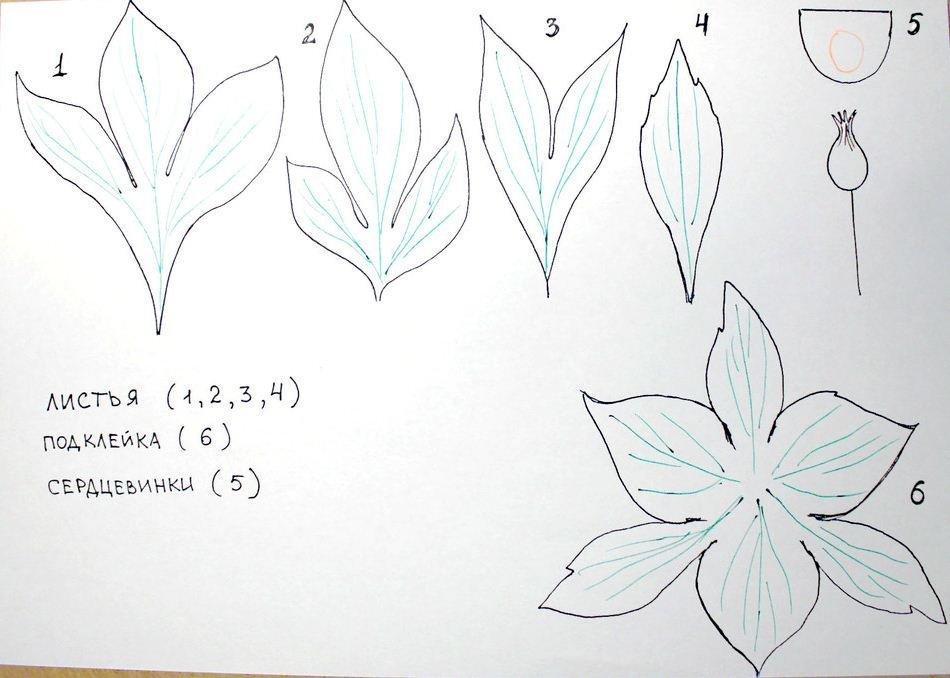 Для того чтобы цветы получились ровными и аккуратными, заранее необходимо подготовить шаблоны лепестков