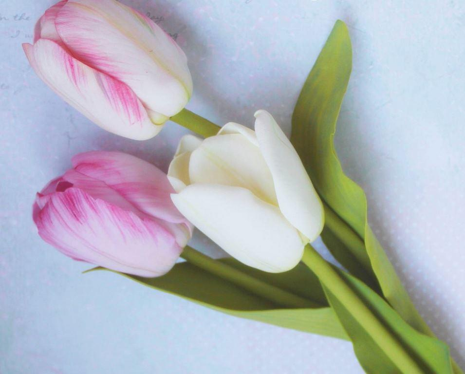 Для того чтобы надежно закрепить лепестки тюльпана на основании, следует использовать только качественный клей
