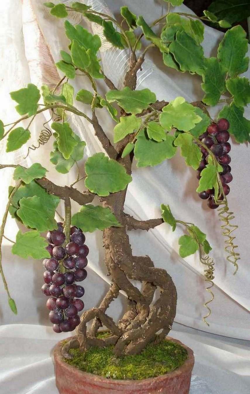 Раньше топиарием называли сад с декоративными подстриженными растениями и скульптурами, теперь так называют вид творчества по изготовлению маленьких деревьев