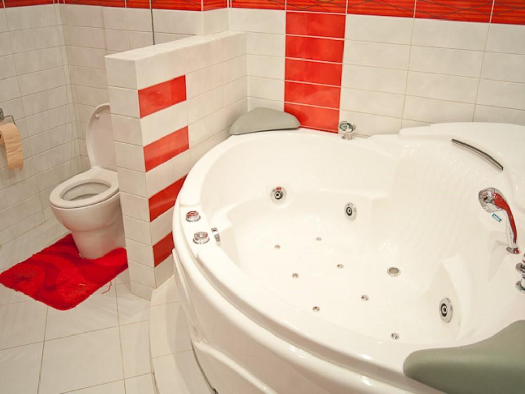 Санузел - это помещение с высокой влажностью, поэтому материалы должны быть водоотталкивающими