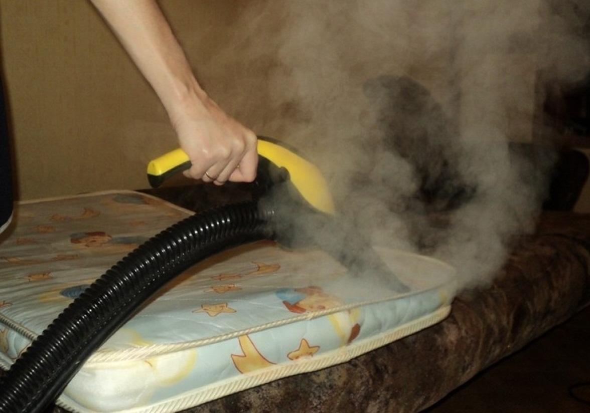 Перед тем как чистить парогенератор, стоит тщательно изучить инструкцию и советы экспертов