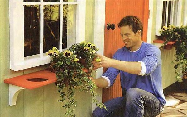 Полка, имеющая отверстия для горшков с цветами, будет оригинально смотреться под окном, а цветы не будут закрывать много света