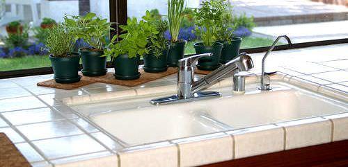 Комнатные растения делают дом уютным и хорошо увлажняют воздух