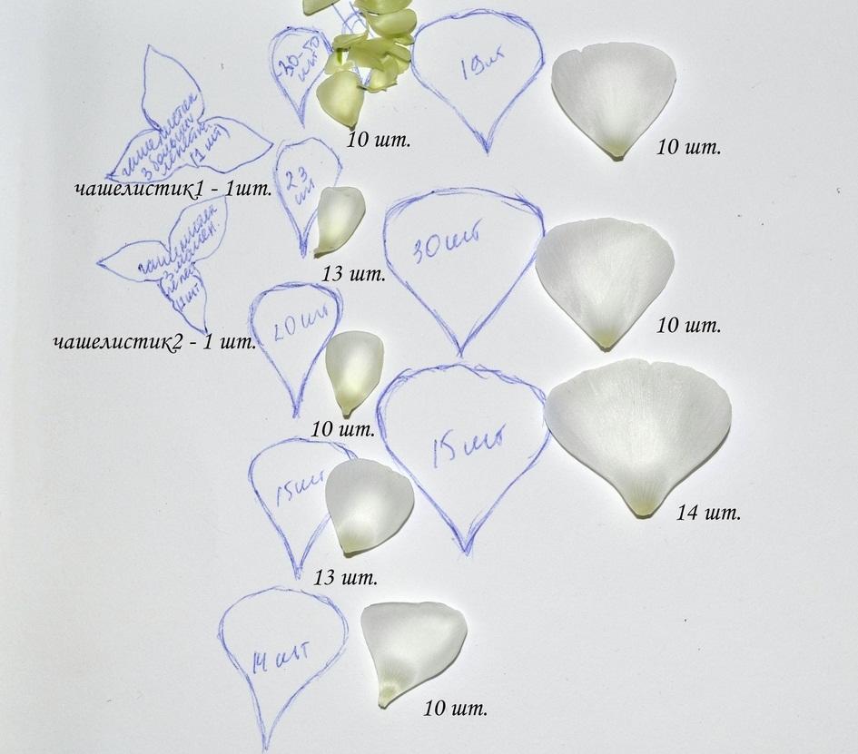В качестве эскизов для выкройки лучше применять живые цветы