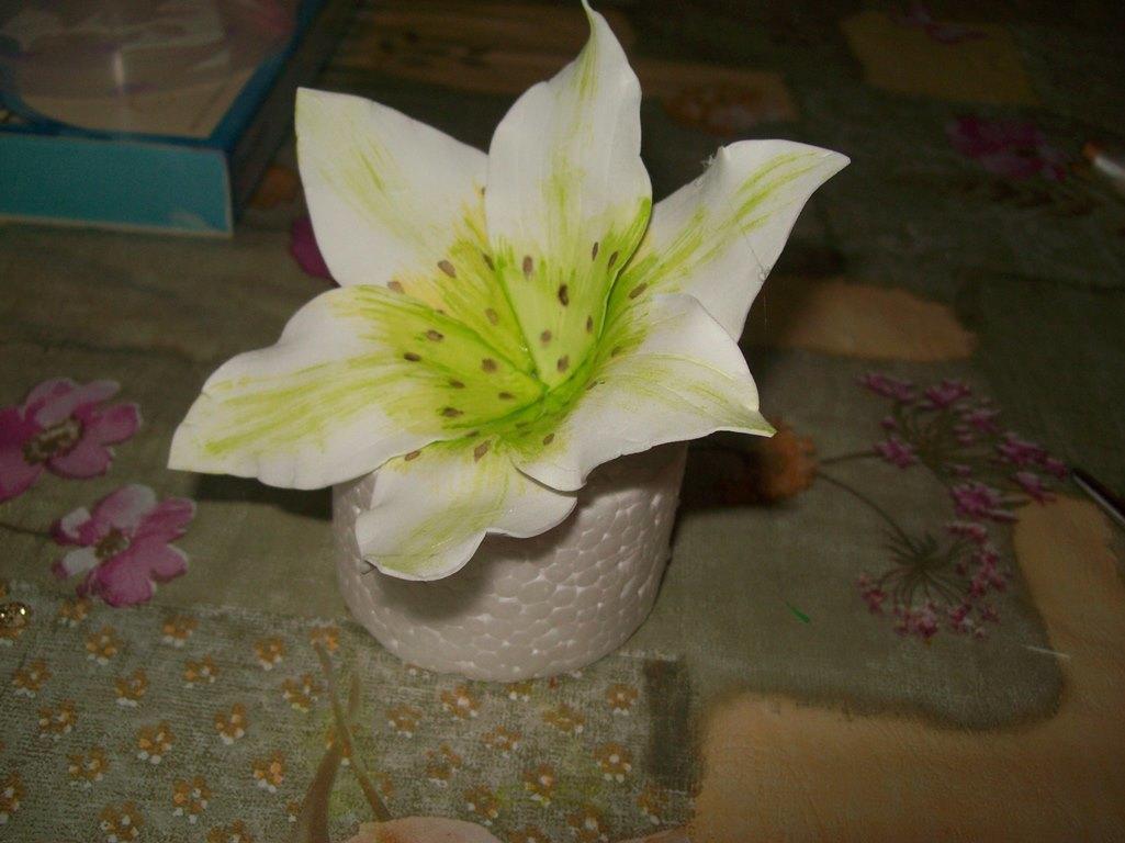 Для того чтобы смастерить лилию, вы можете найти в интернете специальные шаблоны листков и распечатать их на бумаге