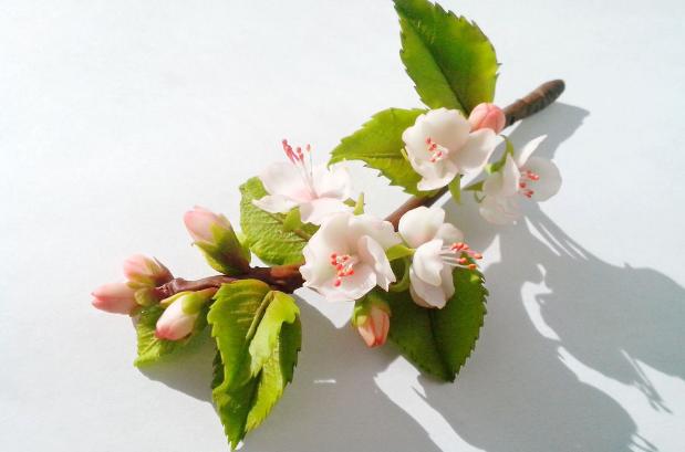 Цветы яблони из фоамирана: мастер-класс и цвет, ветка и МК