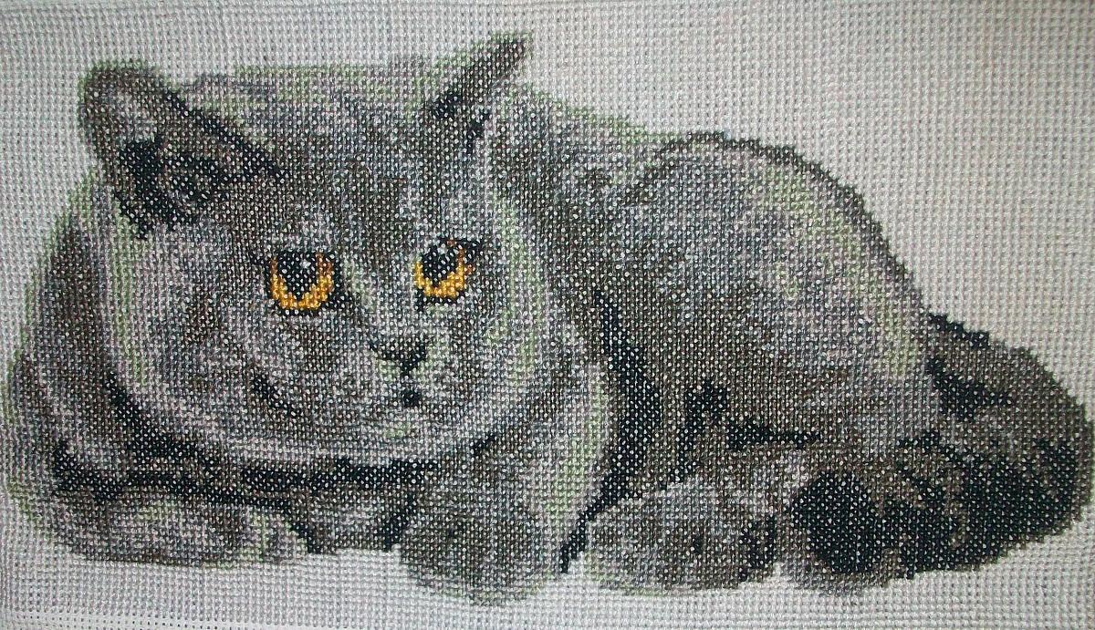 Для вышивания британского кота зачастую применяются нити серого оттенка