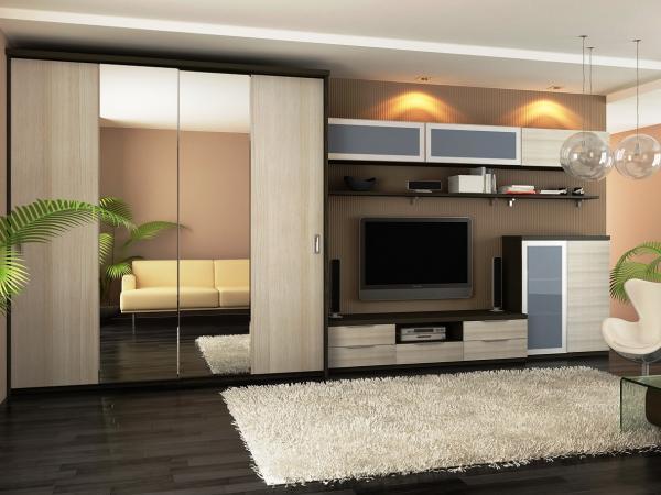 Шкаф в зал: фото в квартире, интерьер во всю стену, красивый дизайн гостиной, виды навесных шкафов, универсальный блок