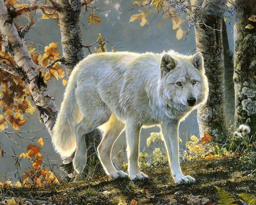 Вышивка с белым волком является прекрасным подарком, который обязательно понравится как взрослым, так и детям