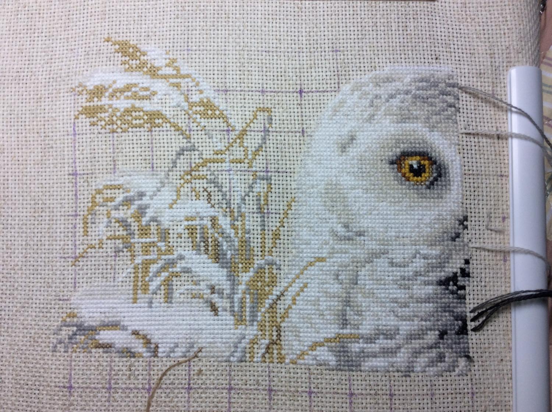 В процессе вышивки белой совы нужно быть крайне внимательным, поскольку похожих оттенков в данной работе будет предостаточно