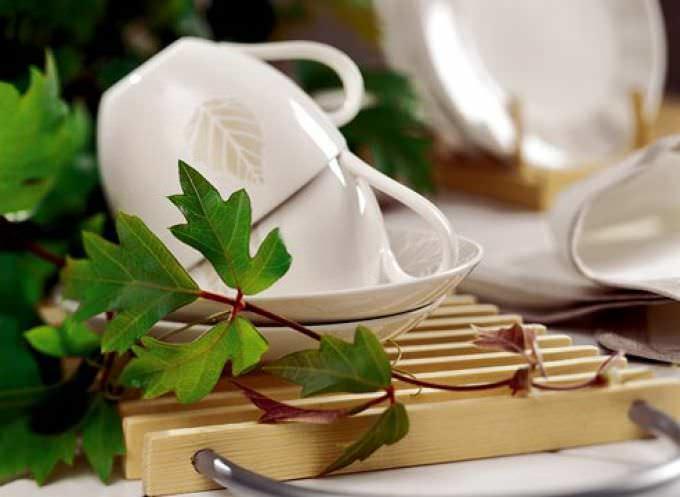 Кухонные растения способны обеспечить человека хорошим настроением на весь рабочий день