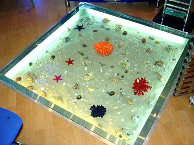 Одним из замечательных открытий в области обустройства полов являются сухие аквариумы