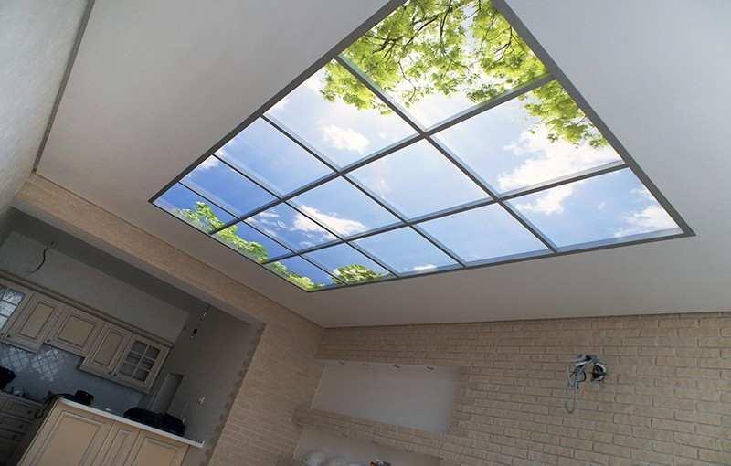 потолки фотопечать стеклянная крыша прическа