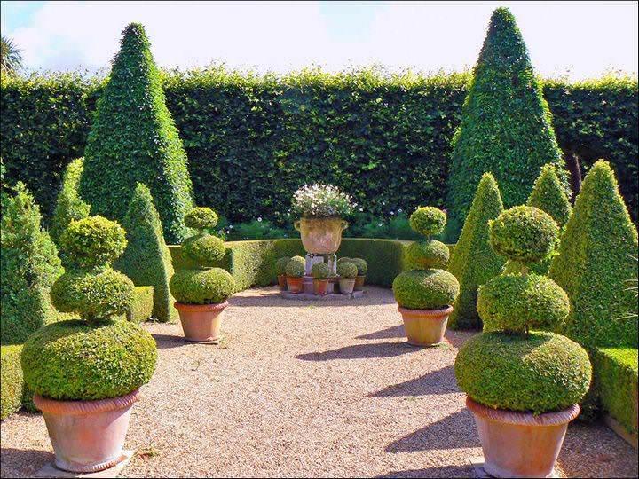 У слова «топиарий» и перевод соответственный, он означает – фигурная подрезка. Оно, в свою очередь, идет от латинского слова для обозначения декоративного садового пейзажа
