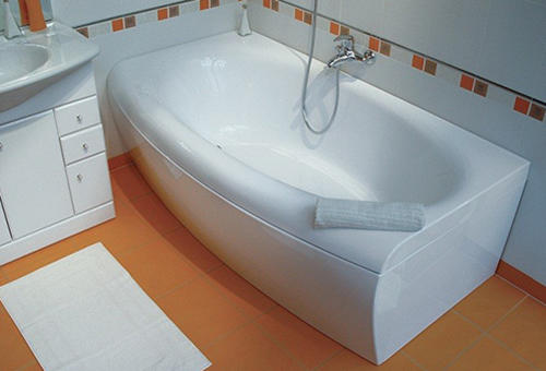 Избавиться от чешуйницы в ванной комнате можно самостоятельно, если правильно подобрать методы борьбы